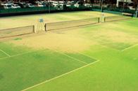 テニスコート兼多目的グラウンド